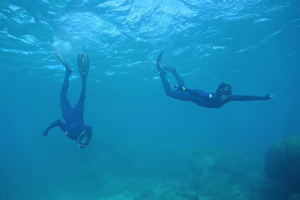 snorkelling ningalloo