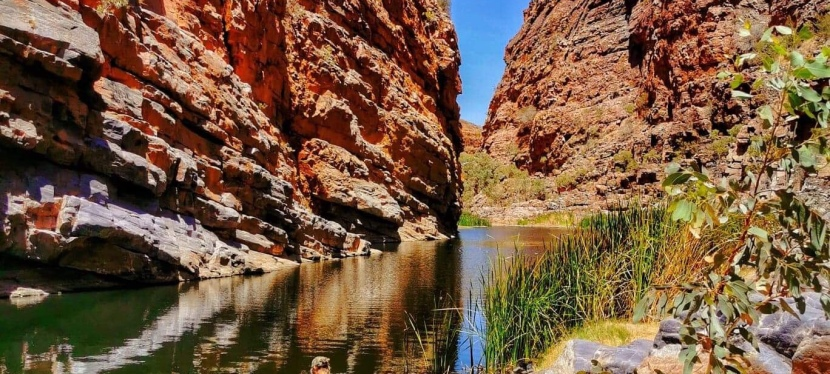 RUBY GAP NATURE PARK – Paradise Found in Central Australia